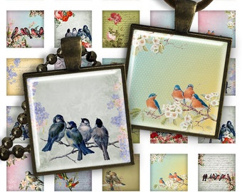 75% OFF SALE Birds - Digital Collage Sheet - 1 inch square size image for pendants glass cabochon charms resin digital image magnets jewelry