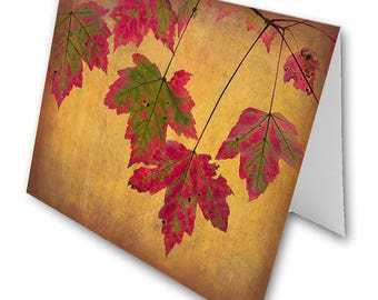Folded Note Cards - Fall Leaves - Fine Art Photography Gifts