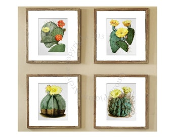 Cactus Decor Botanical Art Print Set of 4 Wall Art Cactus Yellow Orange Green Flowers Southwest decor Desert Decor