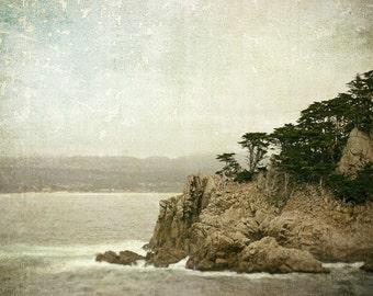 Landscape Photography, California Coast, Ocean, Cypress Trees, Nature Photo, Monterey, Fine Art Print, Sage Green, Brown, Rustic Decor