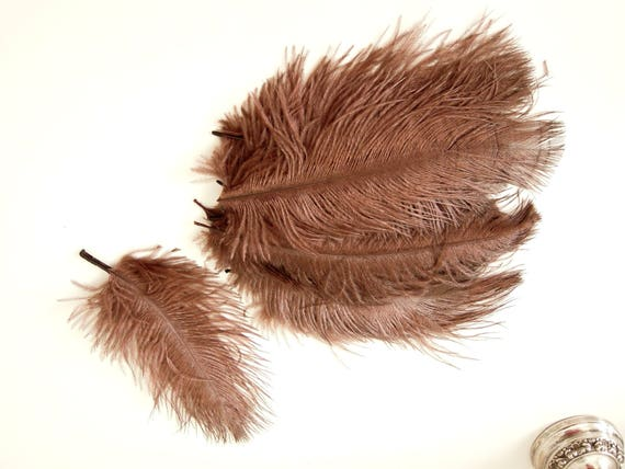 10 Brown Ostrich Feathers 5-7 inch - Burlesque medium size feathers - Craft feathers brown - Real feathers - Fluffy brown feathers.