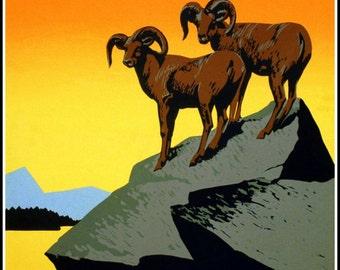Art Print US Wild Life Poster Federal Art Project 1938 - Print 8 x 10