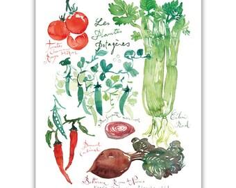 Plantes potagères, Vegetable print, Botanical print, Kitchen decor, Watercolor veggie illustration, Kitchen art, Food painting, Home decor