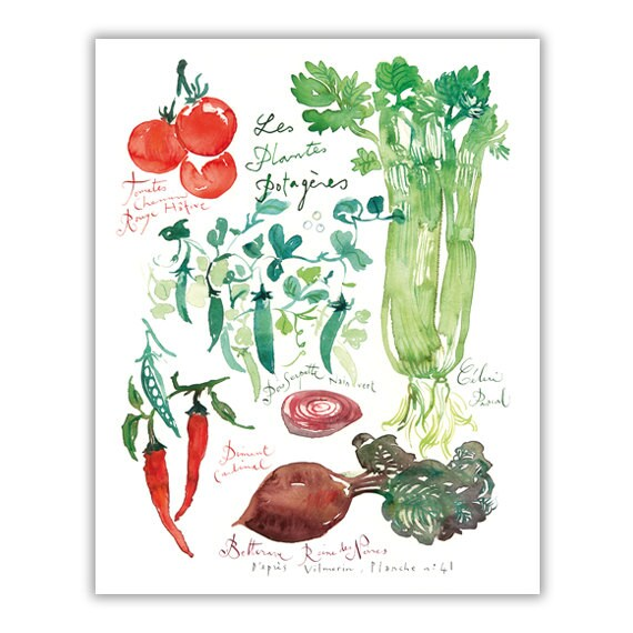 Kitchen Art Vegetables Print Botanicals Kitchen Art: Plantes Potagères Vegetable Print Botanical Print Kitchen