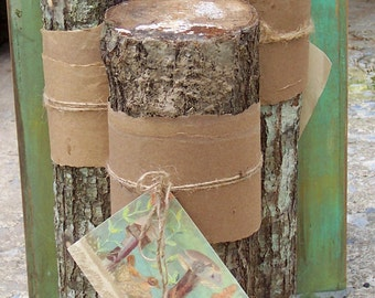 Grow your own gourmet Shiitake mushrooms! These logs are inoculated and ready to begin producing mushrooms.
