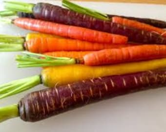 RAINBOW CARROT SEEDS 100 Fresh vegetable seed ready to plant in your garden