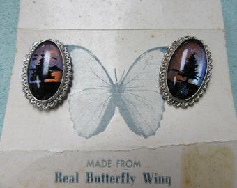 Butterfly Wing Vintage Earrings Screw Back Style Not Pierced