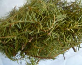 Wholesale 8 Oz  Dried Juniper Needles, Juniper Twigs Branches Bouquet,