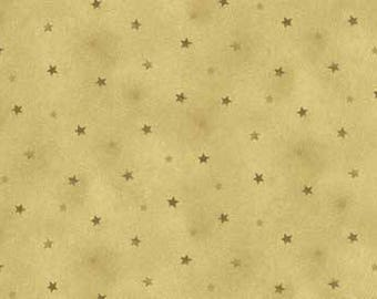 Small Green Stars on a Mottled Green Background Cotton Quilt Blender Fabric, Shine, Red Rooster Fabrics, Fat Quarter, RER467526434-GRE1