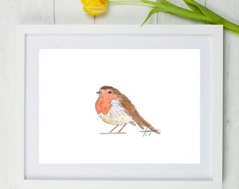 Robin, robin art, robin bird, robin painting, red robin, bird art, bird painting, garden bird