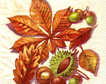 263 264 265 chestnuts leaves ACORNS pattern 4 X 1 towel paper 40 x 40