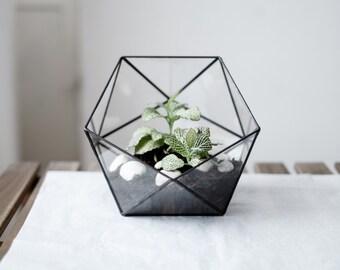 """geometric glass terrarium """"icosahedron"""" - handmade glass terrarium - planter for indoor gardening"""