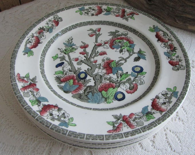 Indian Tree Dinner Plates Johnson Bros. Vintage Dinnerware and Replacements 1979-1982 Greek Key Set of Six (6) Plates