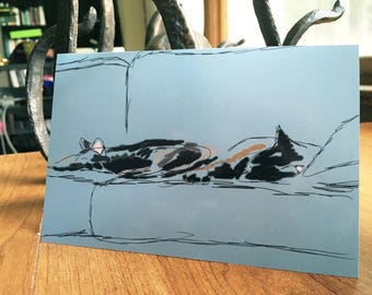 Abstract Cat Print 4x6 Portrait Oberon and Nyx