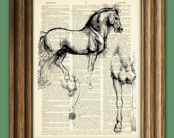 Study of Horse from Leonardo Da Vinci sketch on vintage dictionary page book art print Davinci