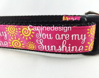 Dog Collar, You Are My Sunshine, 1 inch wide, adjustable, quick release, medium, 13-19 inches