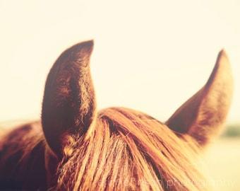 horse photography, brown decor, rustic decor, wall art, farm photography, farm cottage, animal photography, horse ears, All Ears II