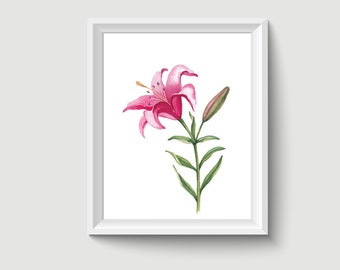 Lily Flower Watercolor Painting Poster Art Print P303