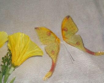 Lemon Luna  Mini Wings