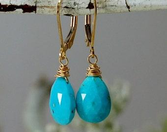 AAA Grade Sleeping Beauty Turquoise Earrings  robins egg Blue Earrings 14ktGF Turquoise Earrings Arizona turquoise American turquoise