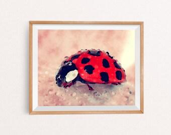 Ladybug Wall Art, Watercolor ladybug, ladybug Watercolor, Ladybug Art, Ladybug Wall Decor, Ladybug Printable, INSTANT DOWNLOAD, 8x10