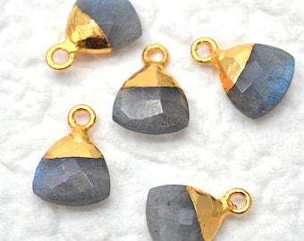 Labradorite Pendant, Gold Pendant, 10mm Trillion Pendant, Pendant, Jewelry Making Supplies, GemMartUSA (LEB-10095)