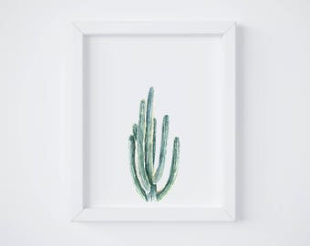 Smooth Cactus No 2 Art Print - San Pedro Cactus - cactus painting - watercolor - cacti - southwestern - greenery - cacti art - southwest