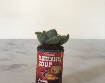 Mini Green Succulent Vintage Red Campbell's Chunky Chicken Noodle Soup Tin/Home Decor Gift Her/Thanksgiving Christmas Holiday Fake Plant