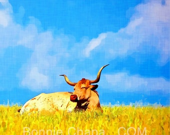 Square 5x5 Note Cards Blank Set of 5 Longhorn Cow Pasture Blue Sky Texas Landscape Thank You Card Greeting Card Stationery