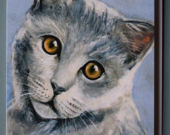 BRITISH BLUE CAT  Blank Greetings Card from original acrylic artwork by Sara Tuckey