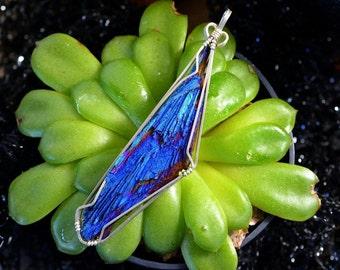 Wire Wrapped Titanium Kyanite in Argentium Silver, Mystic Blue Stone Necklace