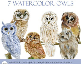7 Watercolor Owls and Barn Owls Cliparts + 6  Small Flowers Cliparts