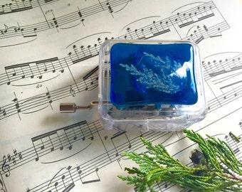 Blue Music Box, Small Music Box, Hurdy Gurdy, Disney Frozen, Game of Thrones Acrylic Music Box, Children's music box, Custom music box.