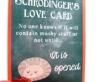 Valentine's Day Card Schrodinger Love Science With Cat Red