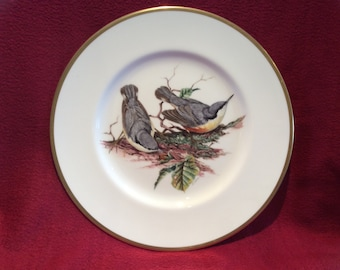 "Coalport British Birds Nuthatch Bone China Plate 10 3/4"" diameter"