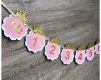 Pink and Gold Months Banner. Newborn to 12 Photo Months Banner. Princess birthday party decor