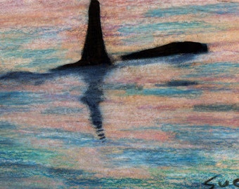 original art  aceo drawing ocean sea orca whale
