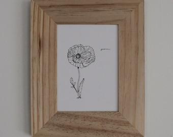 Poppy: The Flower of Peace