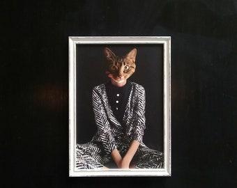 Cat collage ALICE