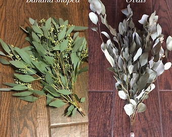 Dried Eucalyptus bouquet, Eucalyptus leaves dried, home decor floral, dried greenery eucalyptus, Floral supply, Floral Picks