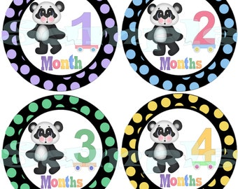 Baby Month Stickers set Monthly Stickers Infant Month Stickers Monthly Baby Sticker Baby Shower Gift Precut Panda Bear Baby Girl Stickers
