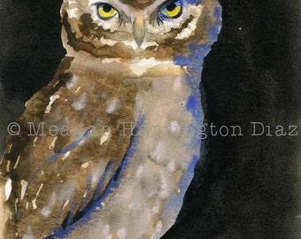 Owl Original Watercolor Painting - 5x7 Screech Owl - Owl Art