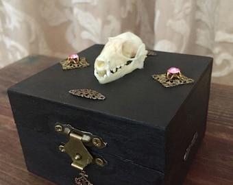 Bat skull jewelry trinket box taxidermy gothic decor art