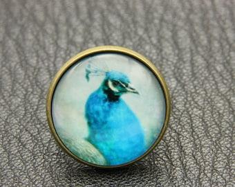 Blue paon Ring, 2020B