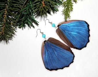 Blue Butterfly Earrings, Real Butterfly Wing Earrings, Real Blue Morpho Butterfly Wing Earrings
