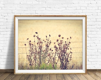 "landscape, nature prints, floral, instant download art, printable art, photography, instant download, farmhouse chic -""Barbed Wire Thistles"""