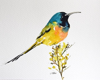 Original Watercolor Painting Colorful Sunbird on A Branch, Yellow Blue Bird 6x8 inch