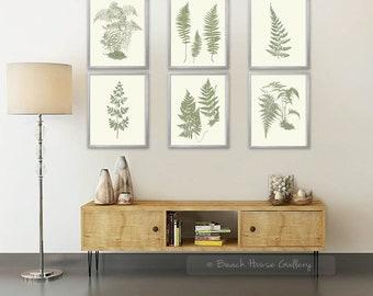 Perfect Fern Wall Art,Fern Print Set, Sage Green Wall Art, Fern Botanical,