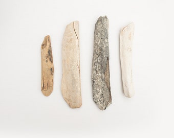 4x FOUND BONE PIECES, Ethical bone, Beach find, natural materials, sustainable craft supplies