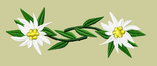Embroidery pattern pair of edelweiss from pullivers on for Embroidery office design version 9